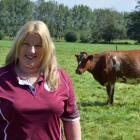 New Zealand Milking Shorthorn Association Otago-Southland branch president Bronwyn Brown checks...