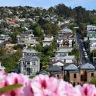 Residential property prices in Dunedin continue to rise. PHOTO: SHAWN MCAVINUE