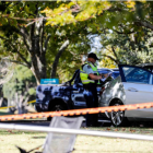Police at Pigeon Mountain Primary School in Bucklands Beach, Auckland, where a child was struck...