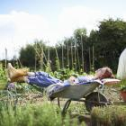 Spending short amounts of time outdoors over a lunch or afternoon tea break can provide downtime...