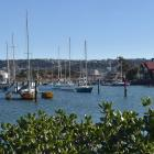 The Otago Yacht Club has submitted to the DCC that there should be a much larger marina at their...