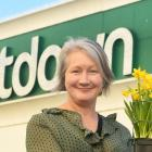 Dunedin woman Tracey Gamble is keen to give daffodils to plant in the garden at 