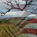 Foreign interests from the United States bought the most land for forestry, dairy, farming and...
