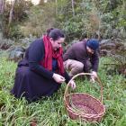 Keen Dunedin foragers Danie Erickson and Josh Urquhart forage for wild onions. PHOTOS: GREGOR...
