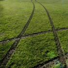 Tyre tracks cross a sports field at the Oval in Dunedin at the weekend. PHOTO: GERARD O'BRIEN