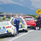 A police dog handler and search dog pick up a scent at an abandoned vehicle on State Highway 1,...