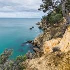 The coastline around Boat Bay, or the Coromandel Peninsula north of Waihi Beach.