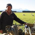 There may be thoughts of retirement for Peter Reveley but for now, he is still working on-farm....