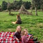 Having fun at a picnic on their grandparents' farm in Riverton during lockdown are Adeline (4)...