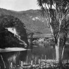 Atene (Athens), on the upper Wanganui River near the Maori settlement of Koroniti (Corinth). —...
