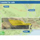 The Otago Regional Council is considering the sale of 50ha of surplus forest and shrubland, once...