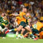 Quade Cooper of the Wallabies kicks the ball through during The Rugby Championship match between...