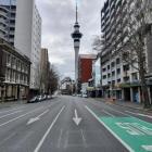Aucklanders have spent weeks in lockdown. Photo: RNZ