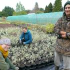 Apprentice horticulturists (from left) Anina Swart, Bryony Anderson and Suede Horsham check over...