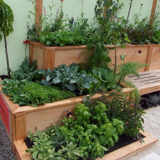 Tiny gardens can still be productive.