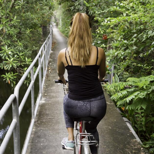 Some of the cycleways through Prapadaeng's bush are elevated; some with safety railings and some...