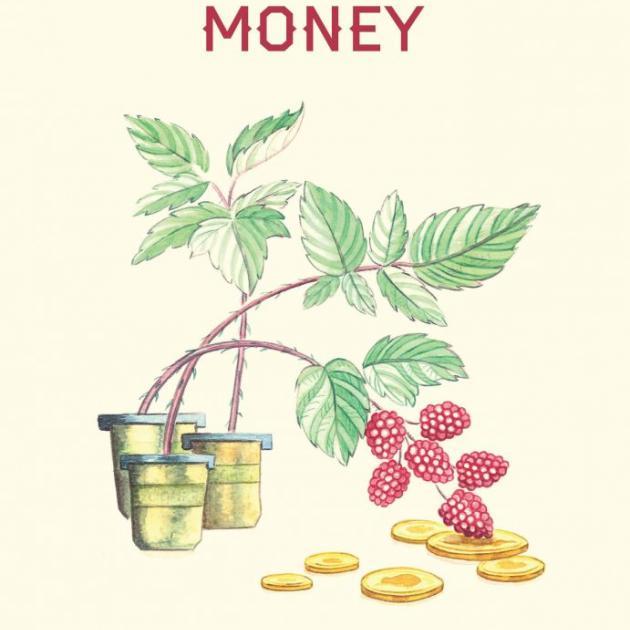 RASPBERRY MONEY<br><b>Alison Denham</b><br><i>Sudden Valley Press</i>