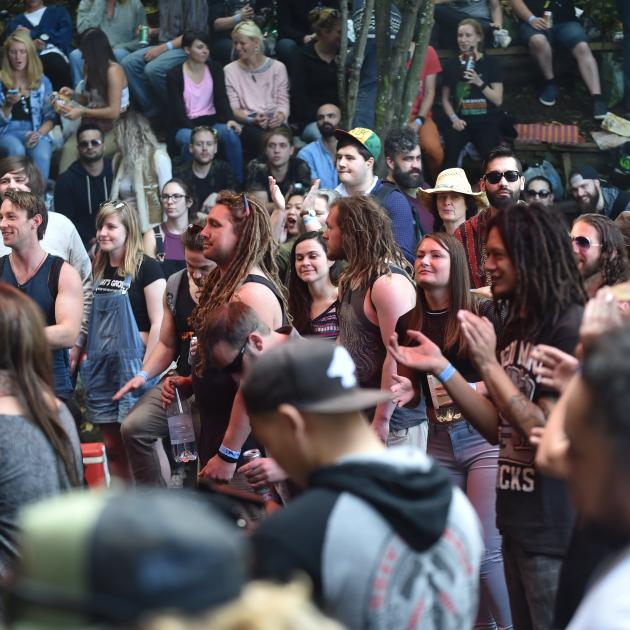 The crowd at Feastock 2017 in the backyard of 3 Fea St in the Dunedin suburb of Dalmore on Saturday. Photos: Peter McIntosh.