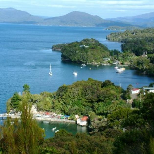 An ambitious $35 million proposal to eradicate rats, wild cats and possums from Stewart Island includes plans for a 5km predator-proof fence around Oban.