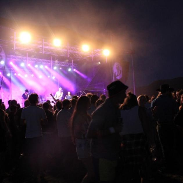 Police say the crowd at The Branding Music Festival have been well behaved. Photos: Margot Taylor