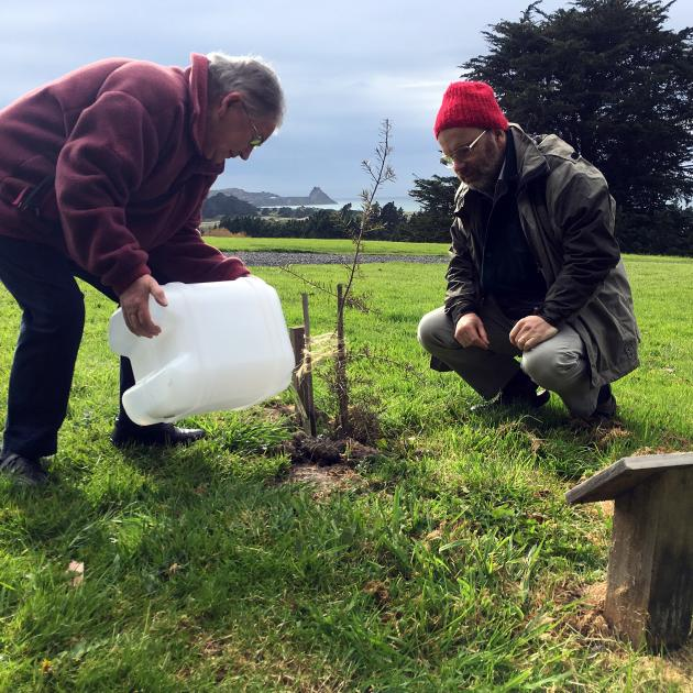 Eleanor Dowden, with son Peter, waters a totara tree planted at her husband Richard's natural...
