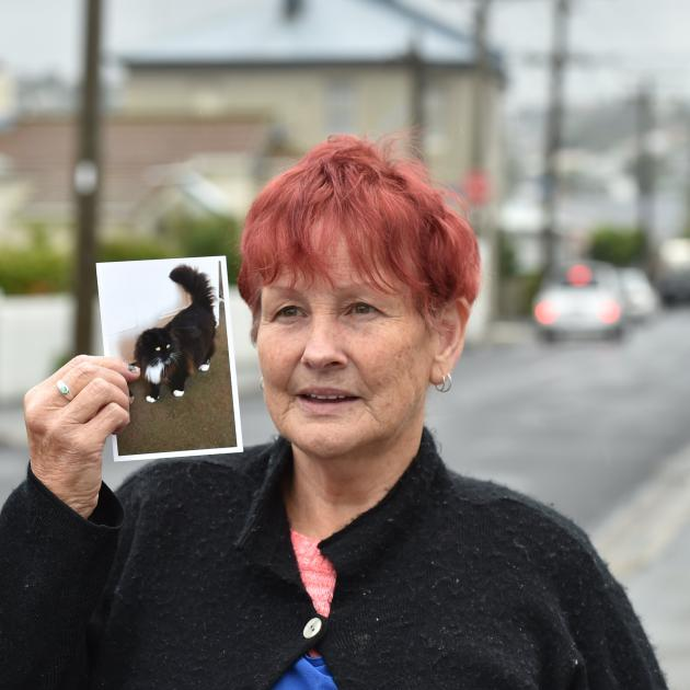South Dunedin resident Pat McKean is urging motorists to slow down, after her daughter's cat...