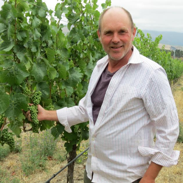Bald Hills vineyard viticulturist Gary Crabbe was pleased when the vineyard's 2015 pinot noir won three trophies in a recent competition. Photo: Yvonne O'Hara