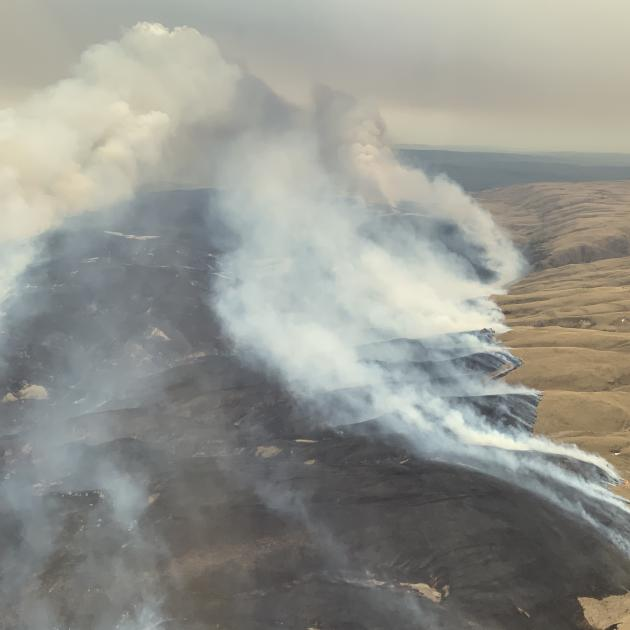The fire near Middlemarch spread rapidly in hot, windy conditions, burning through 2700ha of...
