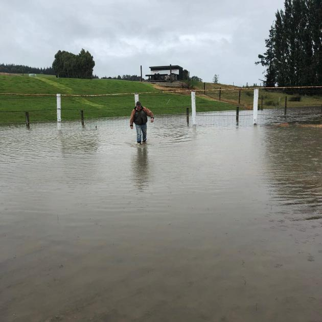 Mataura Rodeo Club member Anthony Perkins wades through the water on the Mataura rodeo grounds....