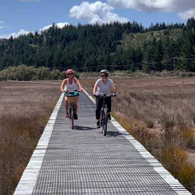 Cycling through mangroves on the longest boardwalk in New Zealand between  Okaihau-Horeke. PHOTOS...