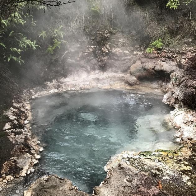 A bubbling mud pool and hot pool at the Orakei Korako geothermal Park.