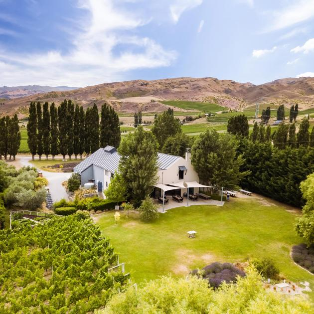 The Carrick vineyard and winery at Bannockburn is for sale. PHOTO: SUPPLIED