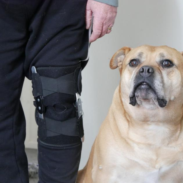 Retired canine instructor Alan Walker is sick of people abusing him for using mobility parking...
