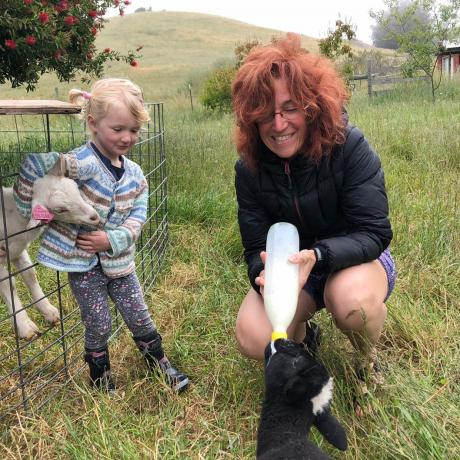 Dr Gwen Grelet feeds a lamb on a ranch managed regeneraticely for grass-fed sheep and beef in...