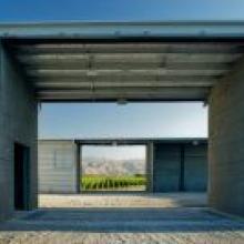 view of the Ara vineyard as seen through the Dart building.