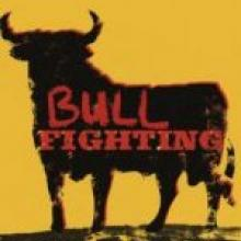 BULL FIGHTING <br><b> Roddy Doyle <br></b><i> Jonathan Cape