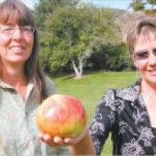An apple a day: Helen Hillis (holding a Peasgood Nonsuch apple) grows as much of her own produce as she can and will share her experiences of living