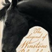 THE LEGEND OF WINSTONE BLACKHAT<br><b>Tanya Moir</b><br><i>Vintage/Penguin Random House</i>