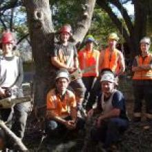 From left, arborists Olivia Colson and Ben Stenner with Otago Polytechnic students Sam Bradley, James Francis and Alf Lynch; in front foreman Luke  Sergent and Asplundh contracts manager Rob Slater.