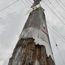 A pole like many causing public concern. Photo: ODT.