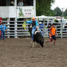 Connor Sandri, of Oamaru, holds on tight as he competes in the second-division bull ride at the...