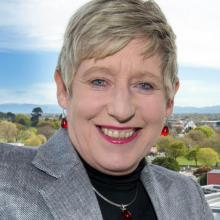 Mayor Lianne Dalziel say vicious political campaigns thrive online. Photo: Supplied.