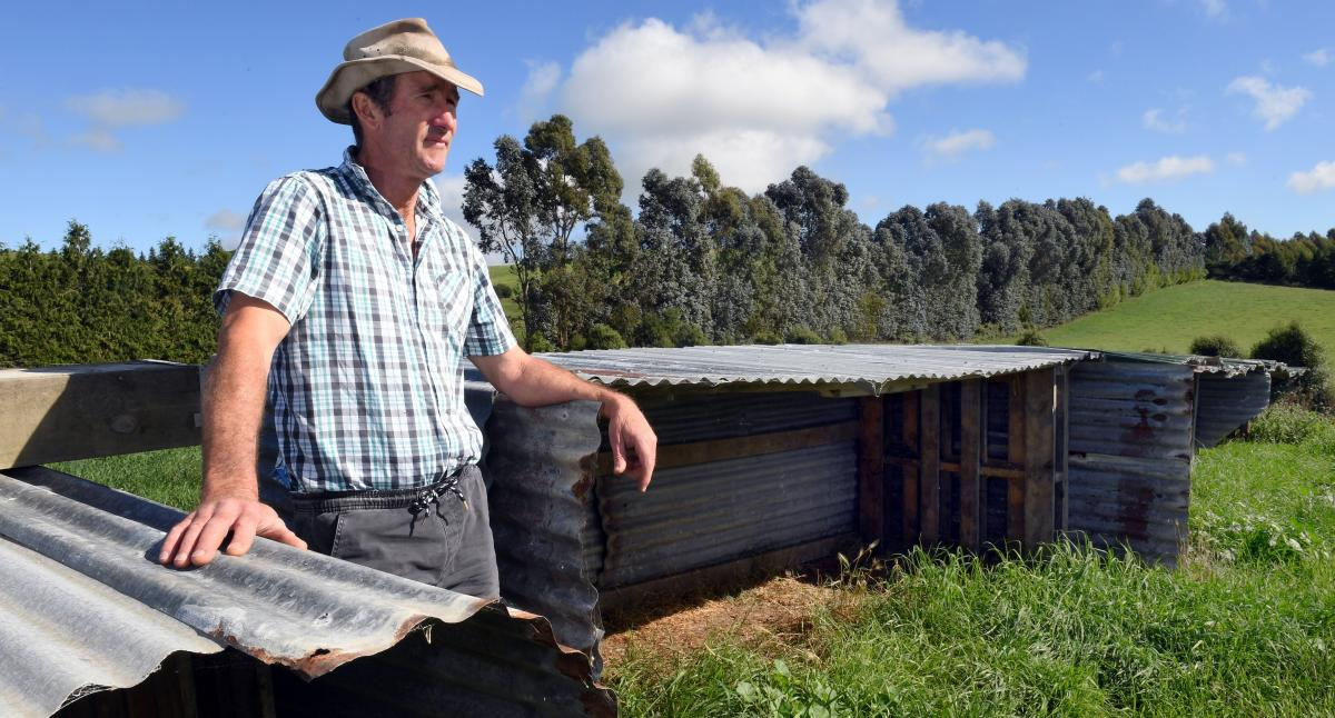 'Dark moments' dealing with cattle disease