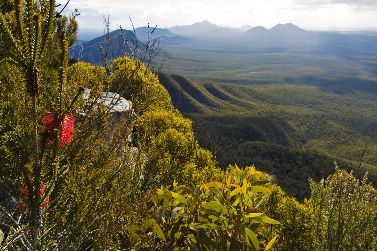 84-year-old survives 4 days in remote WA park