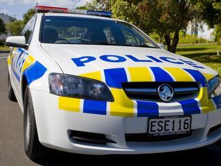 Police boost presence around Dunedin schools