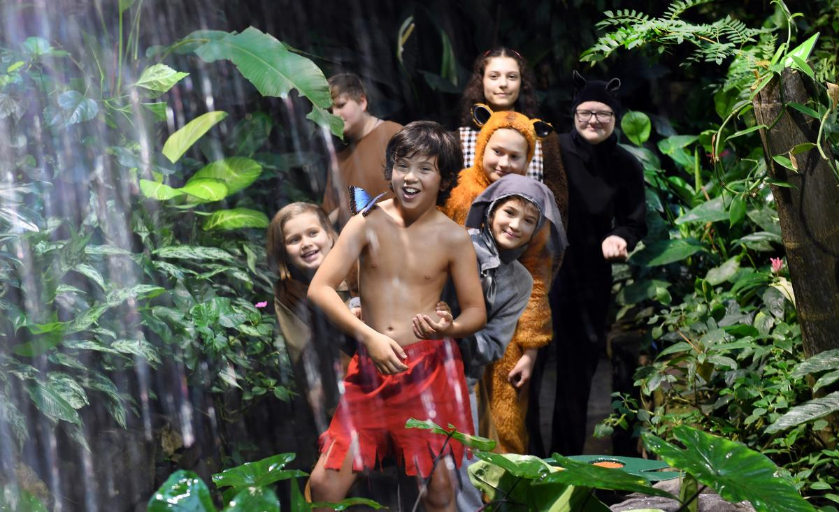 Young actors to unleash wild side