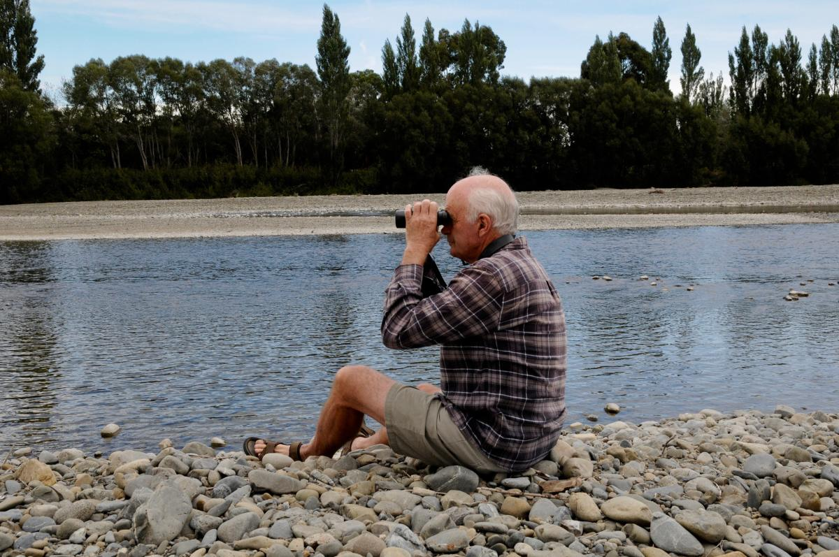 Charred riverbed could aid birdlife