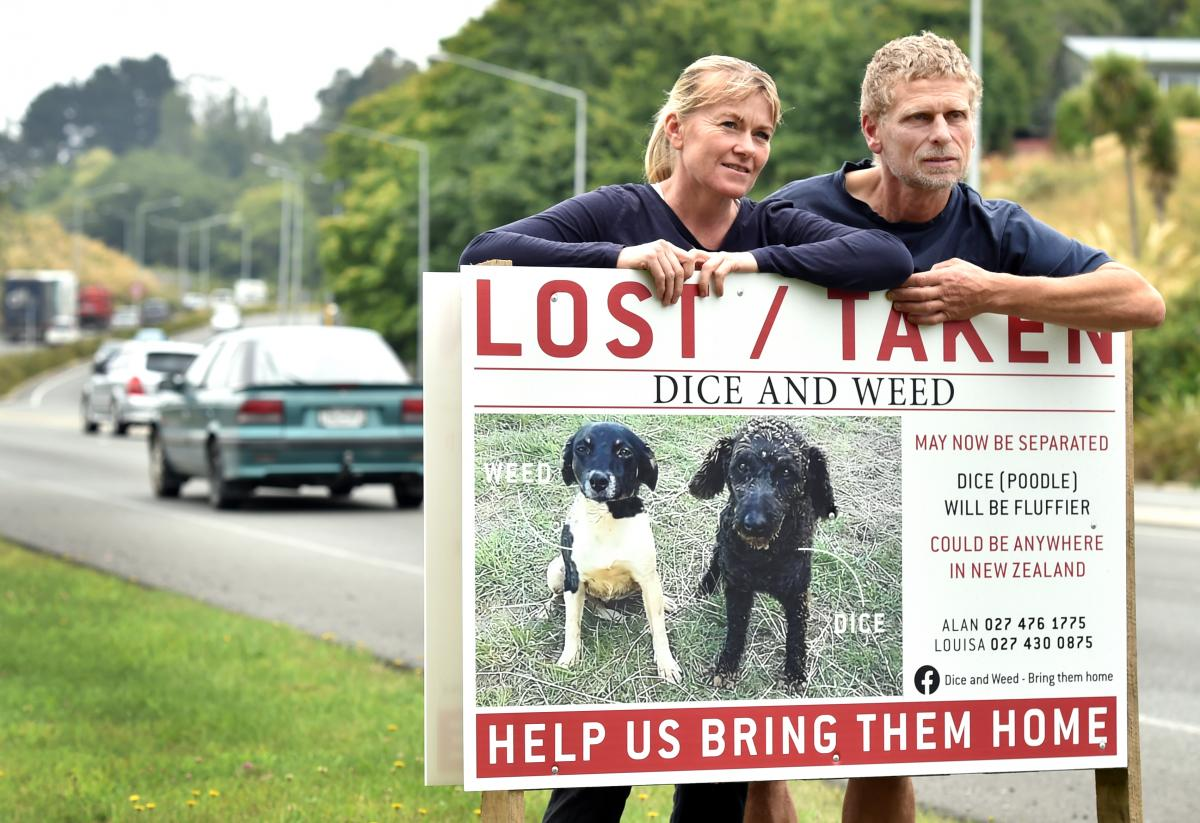 Hoaxer makes couple more determined to find missing...