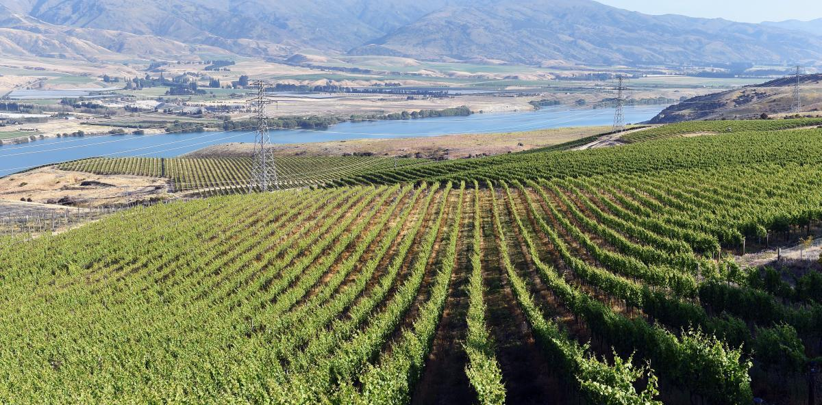 Winemaking need not drain reservoirs