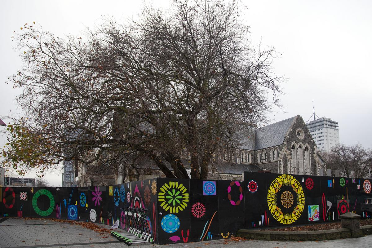 Historic Cathedral trees and the passing of Wayward
